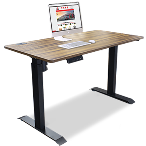 Electric Adjustable Desk