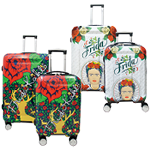2-Pc Set 20''+28'' Luggage Set